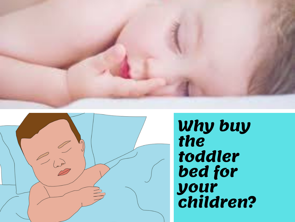 Why buy the toddler bed for your children?