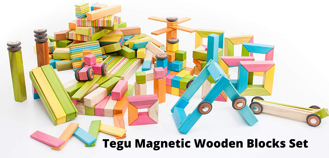 Choose the best Tegu Magnetic Wooden Blocks Set